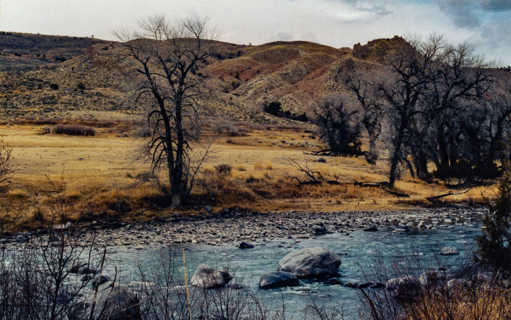 033. Wyoming, March, 2000 (14)_2