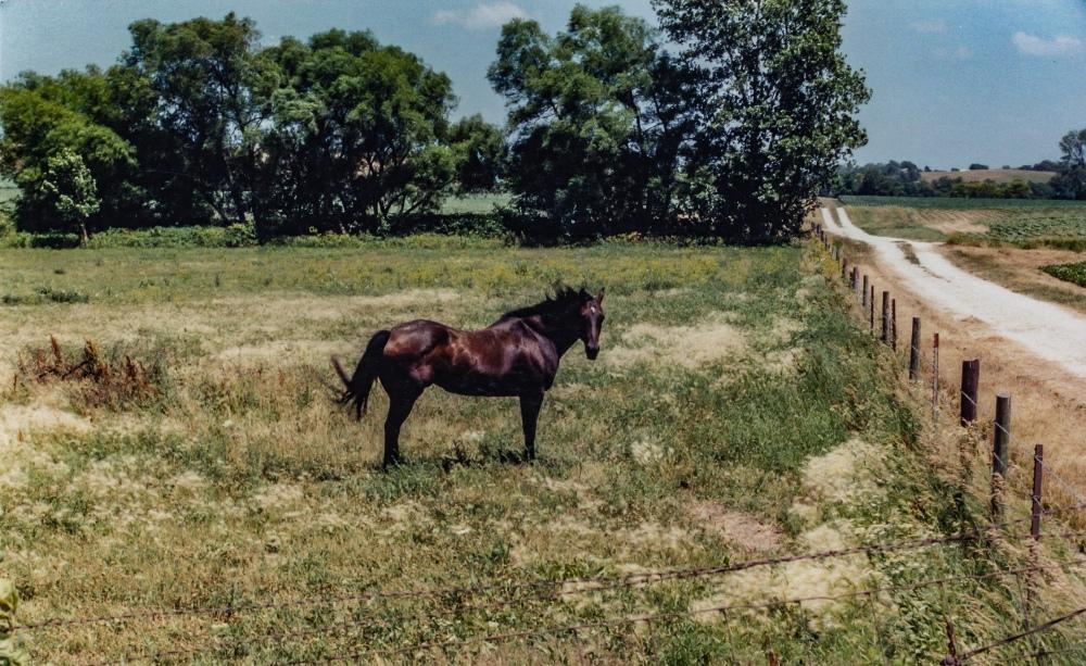 174. Iowa, July, 2002